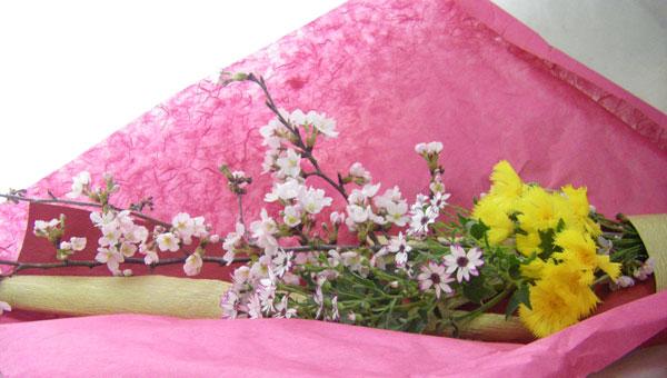 桜とイエローサルタンのお祝いの花束