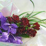 バンダとバラの花束