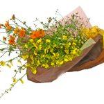 オレンジコスモスの花束