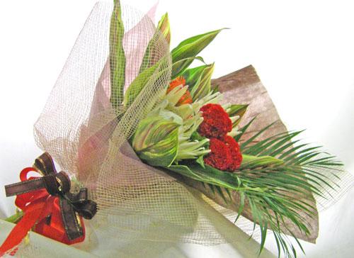 キングプロテアとケイトウの花束