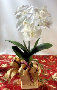 鉢植え仕立てのプリザーブド胡蝶蘭