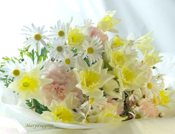 ラッパ水仙とマーガレットの花束