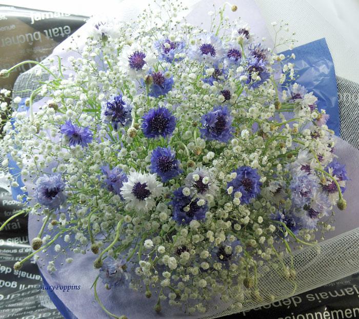 ヤグルマギクとカスミソウの花束