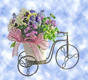 春のお花の自転車に乗って・・