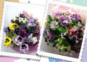パンジーの花束〜Pure love
