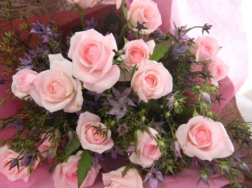 イブニングスターと薔薇の花束