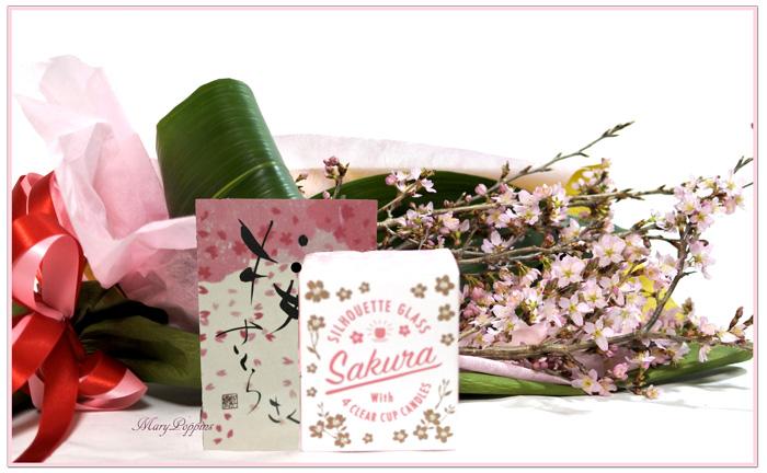 桜のギフトセット・桜咲く